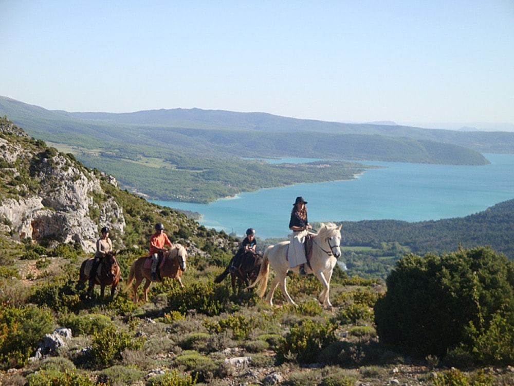 gorges du verdon cheval